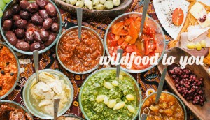 wildfood8